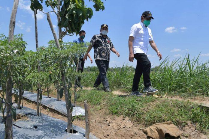 Menteri Desa PDTT RI, Abdul Halim Iskandar dalam kunjungan kerja ke Kabupaten Blora, Jawa Tengah, Indonesia