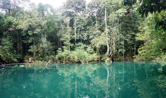 Desa Merabu