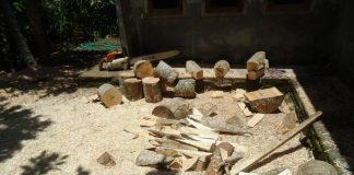 Perhutanan Desa Bobung